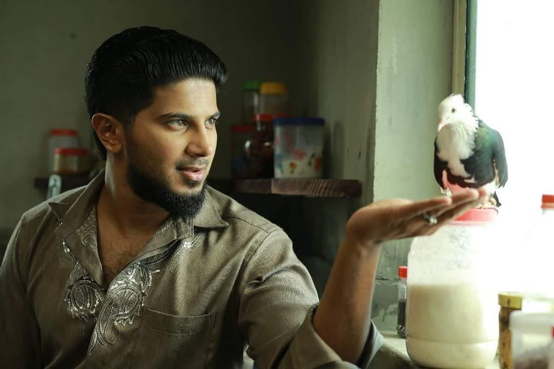 16times DQ proved he was more than just another star kid