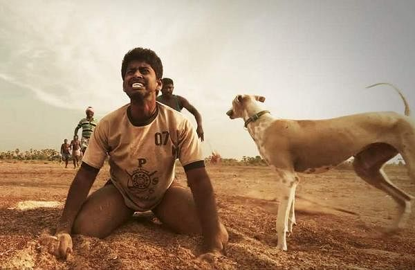 1 Year of Pariyerum Perumal